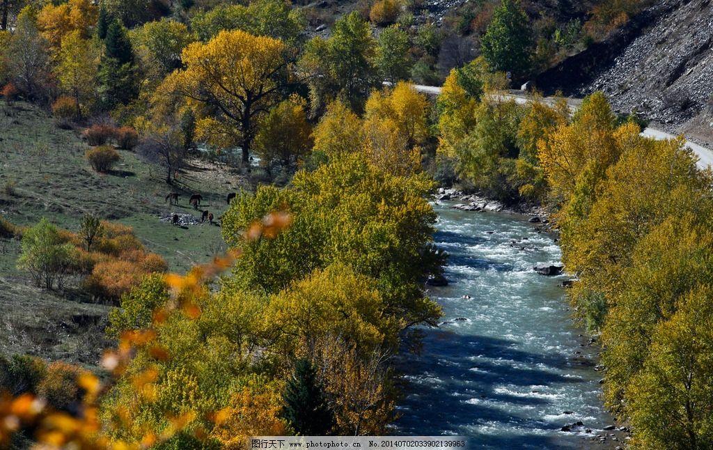 恰西风景区 自然风景 风景名胜 风景壁纸 新疆风景 伊犁 草原