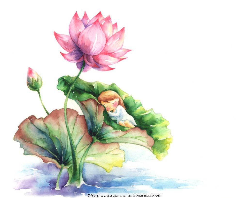 花卉 玫瑰 人物 手绘