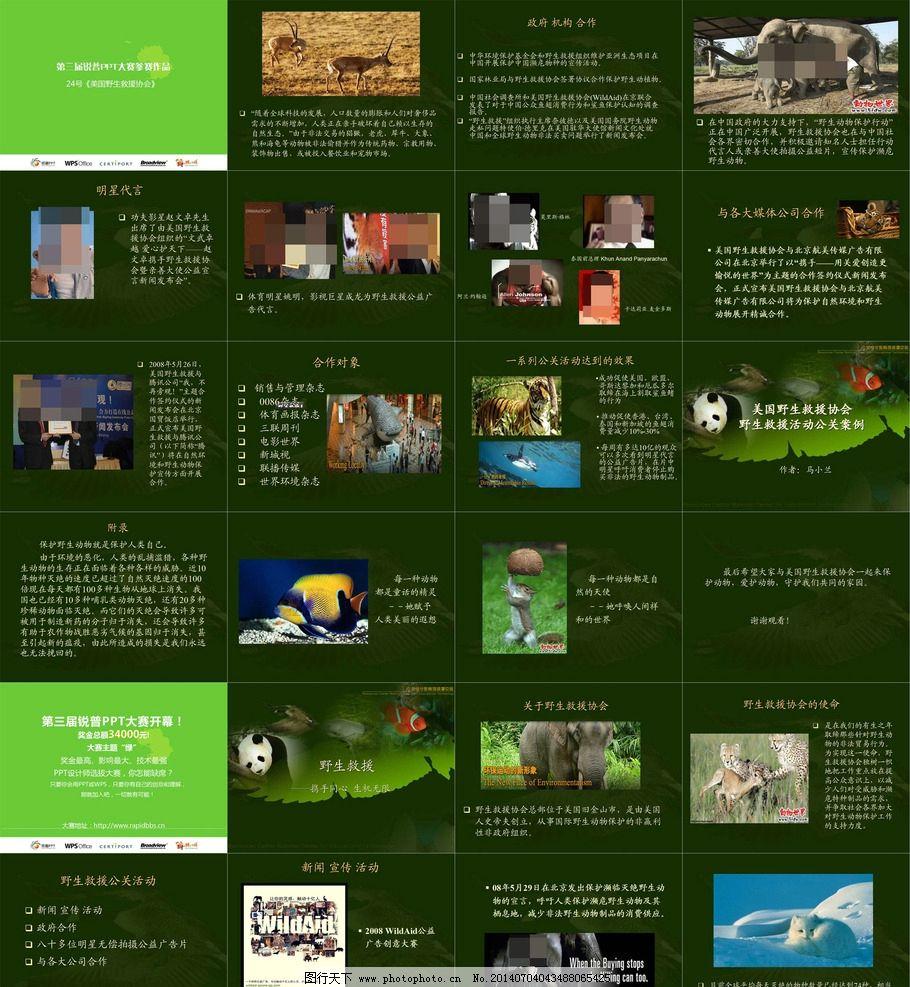 野生动物 野生 救援 协会 背景 图案 活动 ppt 模板 ppt幻灯片源文件