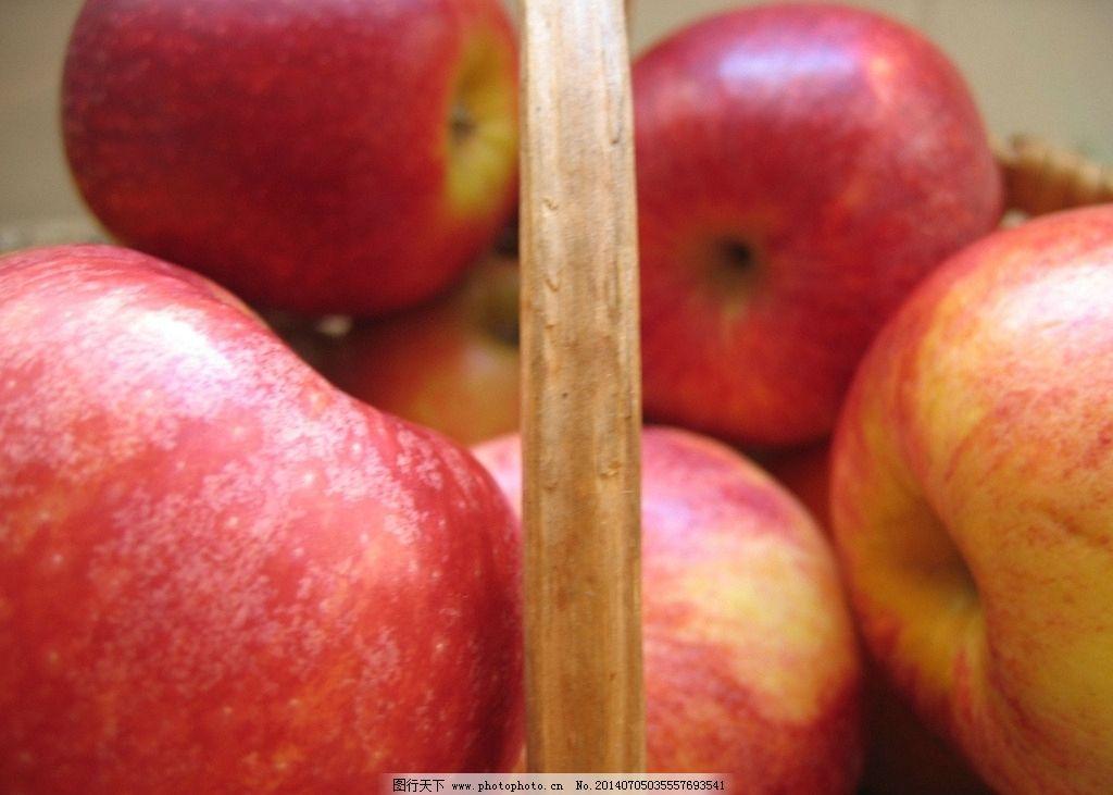 苹果 水果 新鲜水果 植物果实 fruit 新鲜水果系列一 生物世界 摄影
