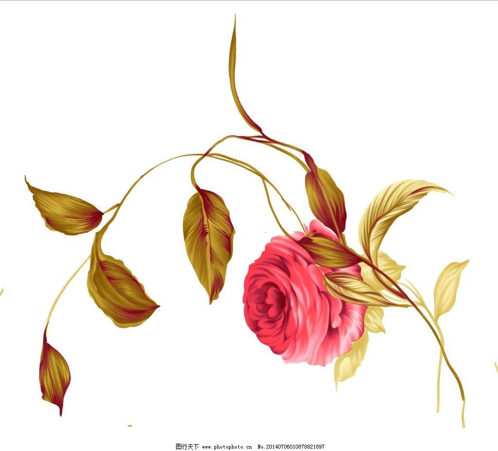 手绘图 红色月季花