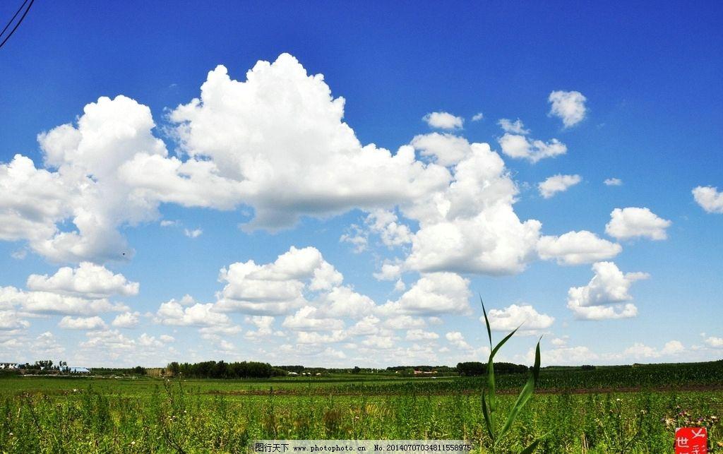 蓝天白云 蓝天 白云 黑土地 庄家 绿树 自然风景 自然景观 摄影 96dpi