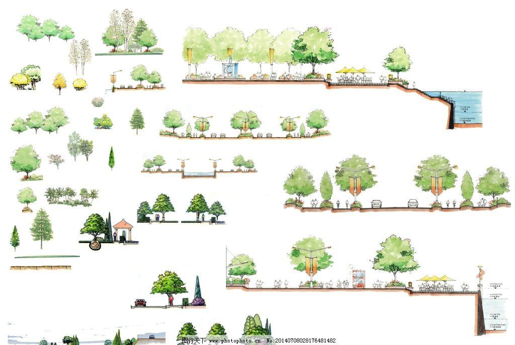 园林设计 手绘 景观 剖面图 立面树 景观设计 环境设计 设计 150dpi p