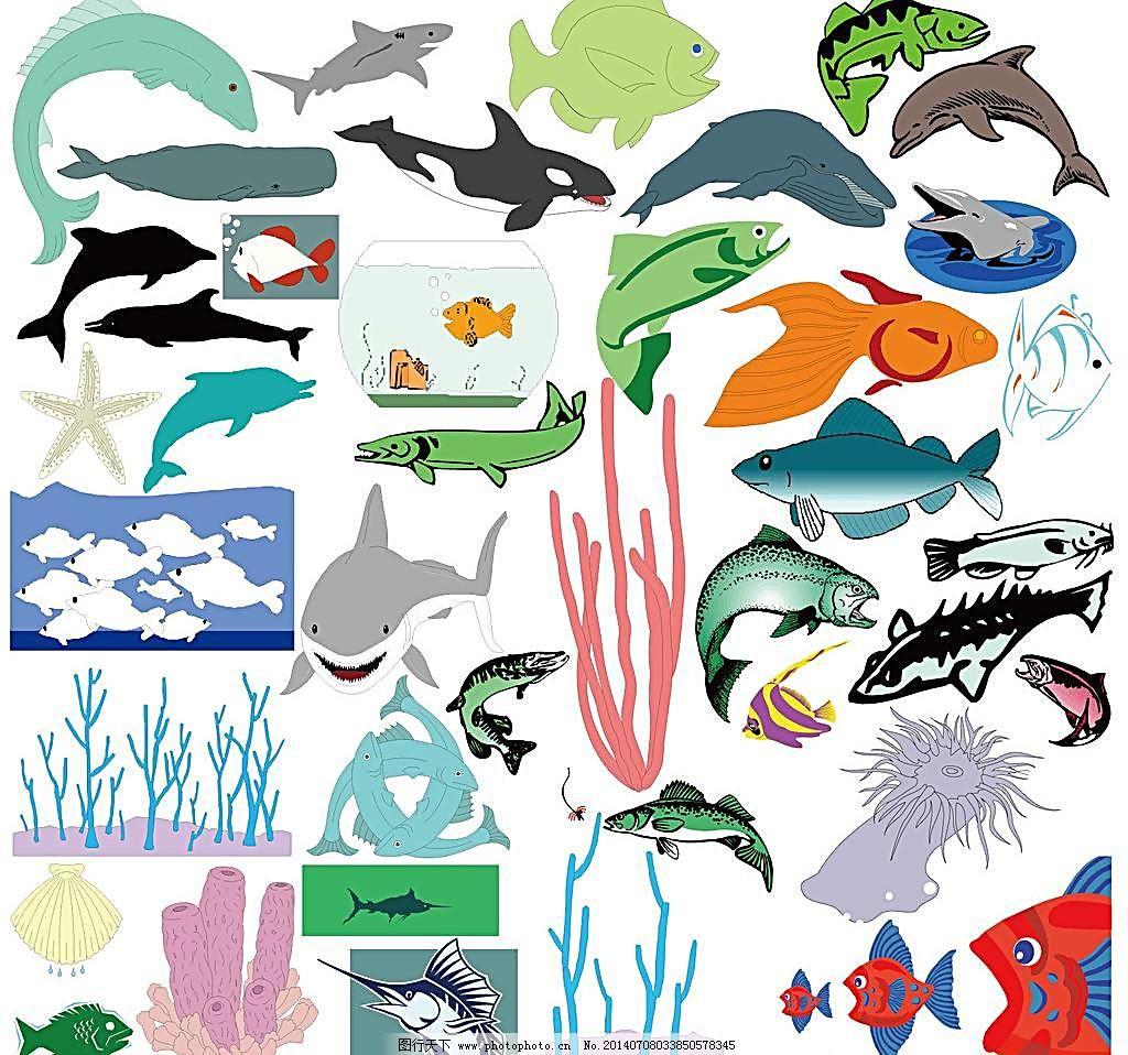 海底动物黑白线描