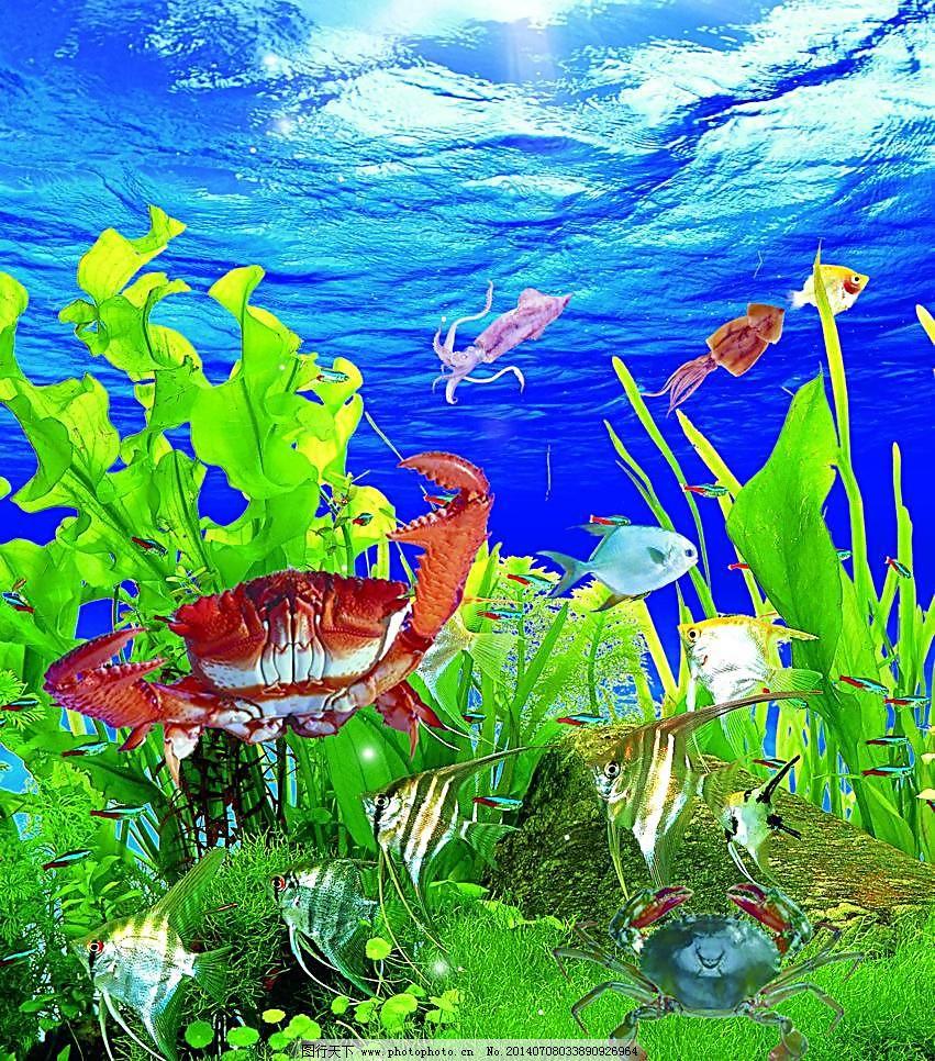 海底世界 动物 动物世界 风景 广告设计模板 海边 海草 海底生物