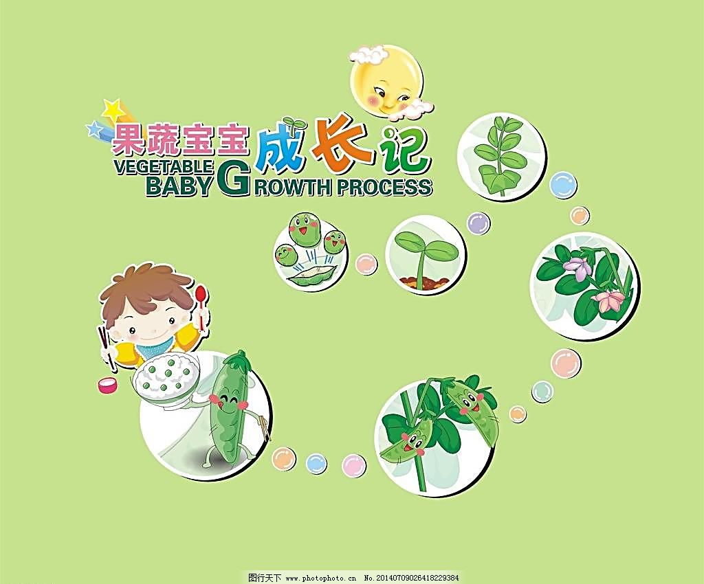 蔬菜宝宝成长记图片