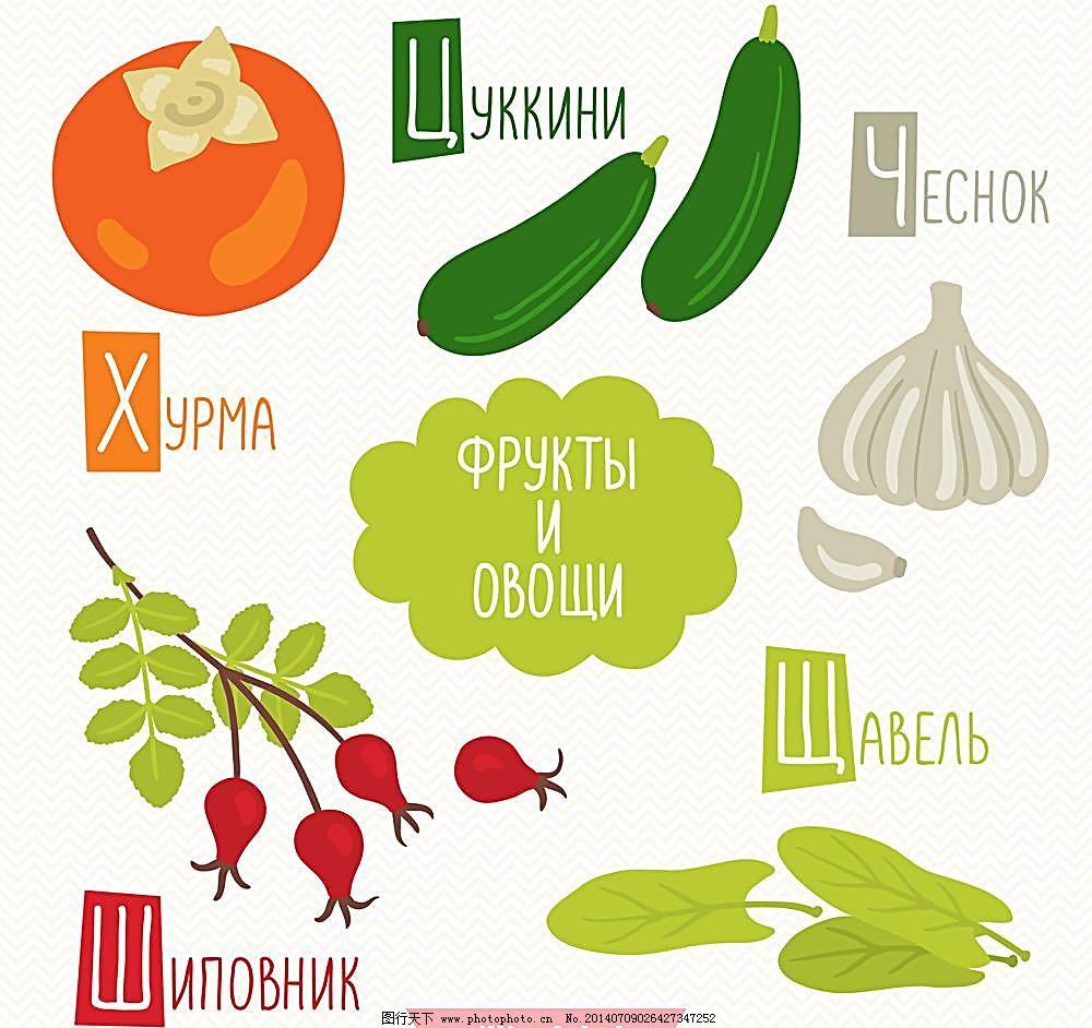 eps 大蒜 黄瓜 绿叶 生物世界 手绘 手绘蔬菜 蔬菜 水果矢量 西红柿