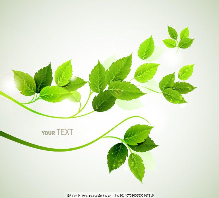 背景 简约 绿色 清新 矢量图 树叶 简约 清新 绿色 树叶 背景 矢量图