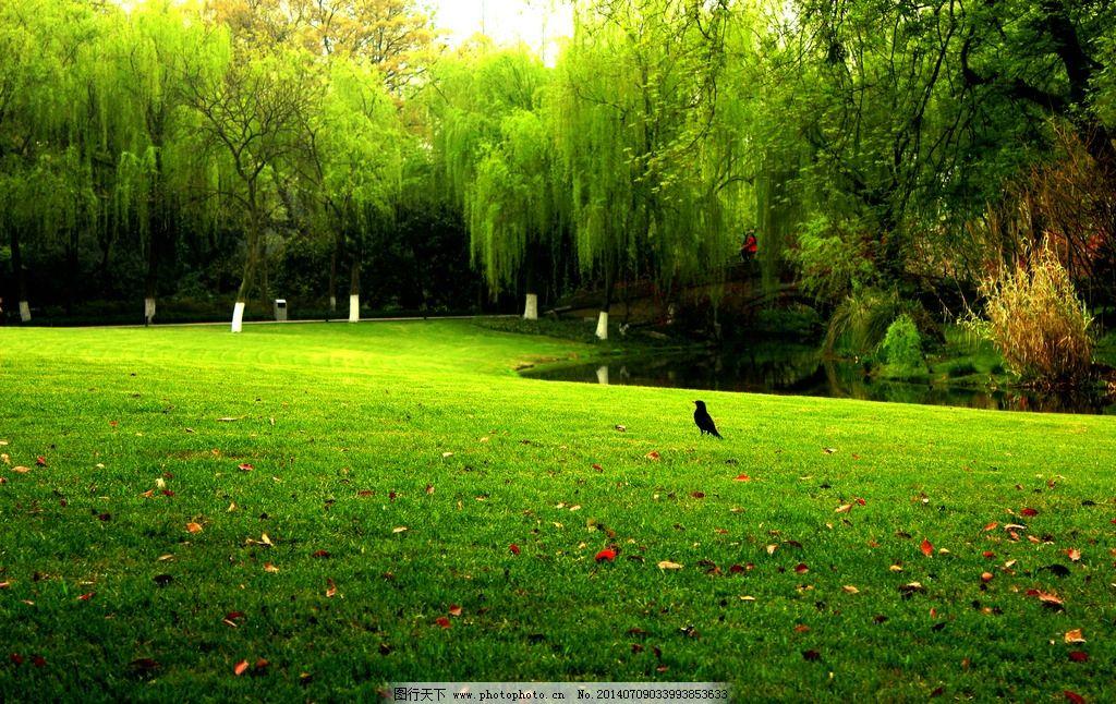 公园绿地 秦皇岛 北戴河 植物园 自然 风景 风光 国内旅游 摄影
