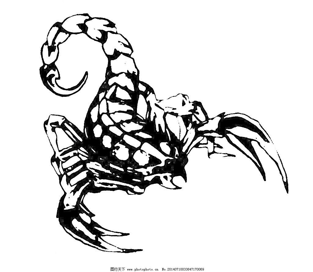 蝎子纹身图片免费下载 cdr 昆虫 生物世界 蝎子 蝎子纹身 蝎子 动物