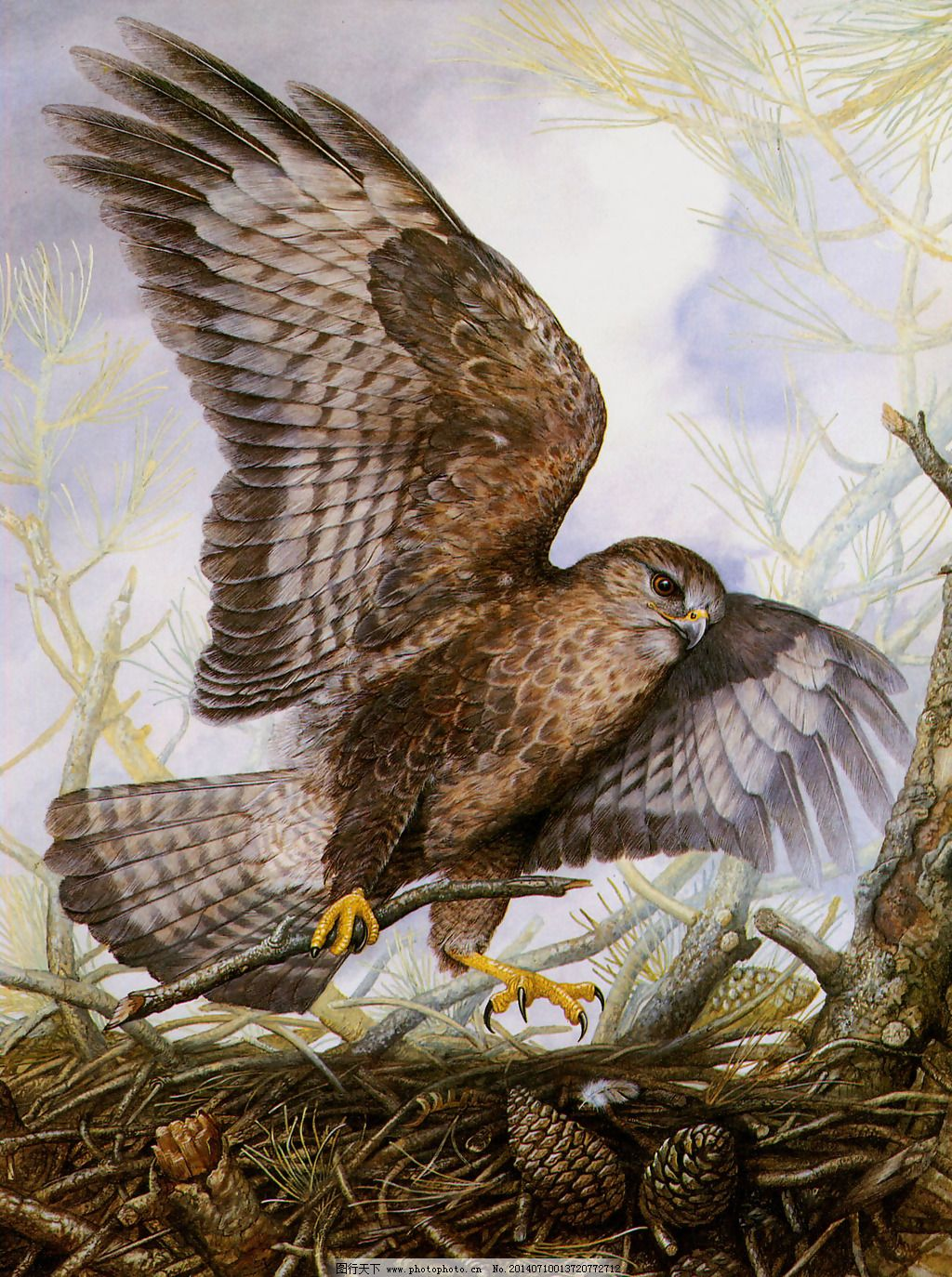 位图 植物 树叶 动物 鸟 免费素材 位图免费下载 服装图案 面料图库