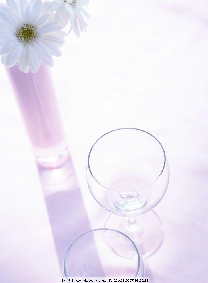 室内花朵摄影