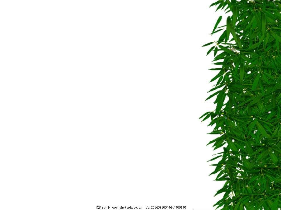 竹叶绿色背景ppt模板