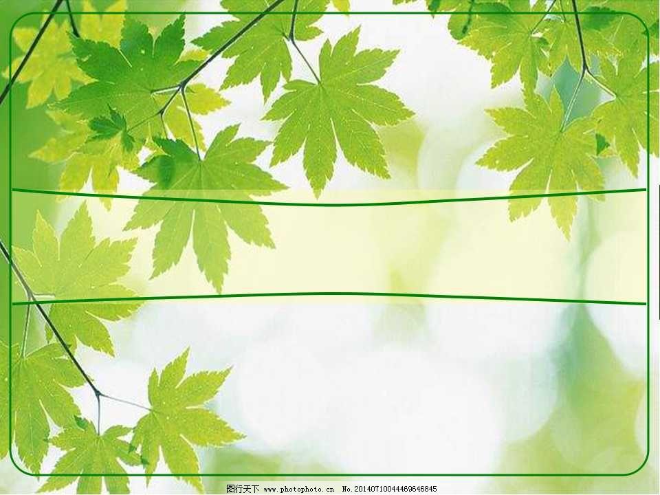 绿色枫叶背景ppt模板