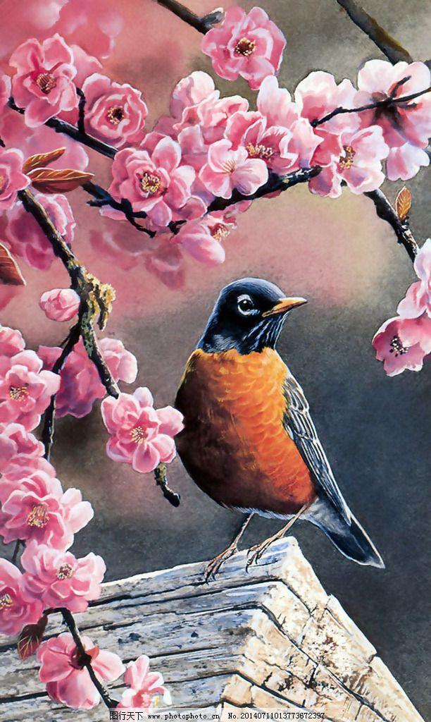 位图 植物图案 写意花卉 花朵 梅花 免费素材