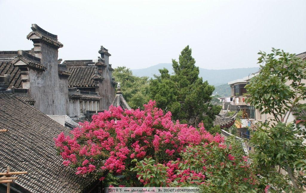 花丛 美景 马头墙 绿树红花 绣球花 摄影