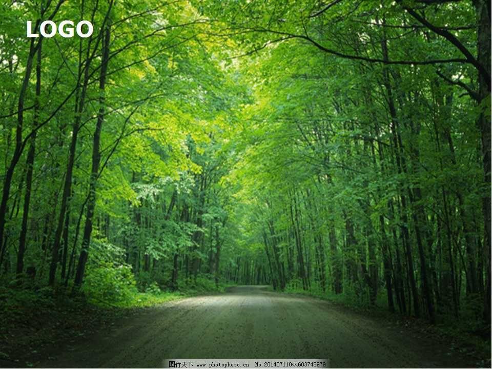 大自然森林背景图片绿色ppt环保模板