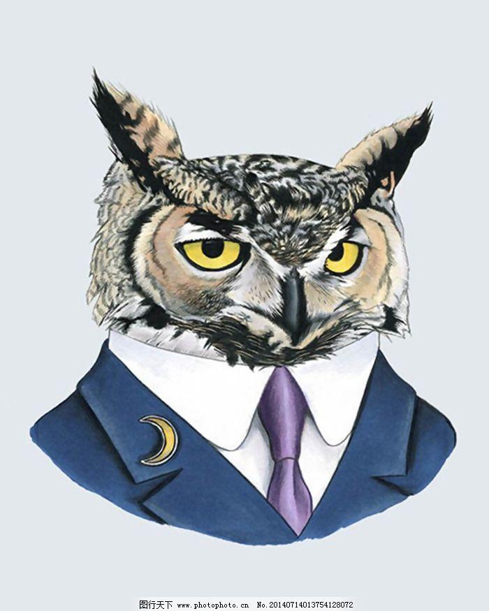 位图 插画 动物 猫头鹰 西装 免费素材