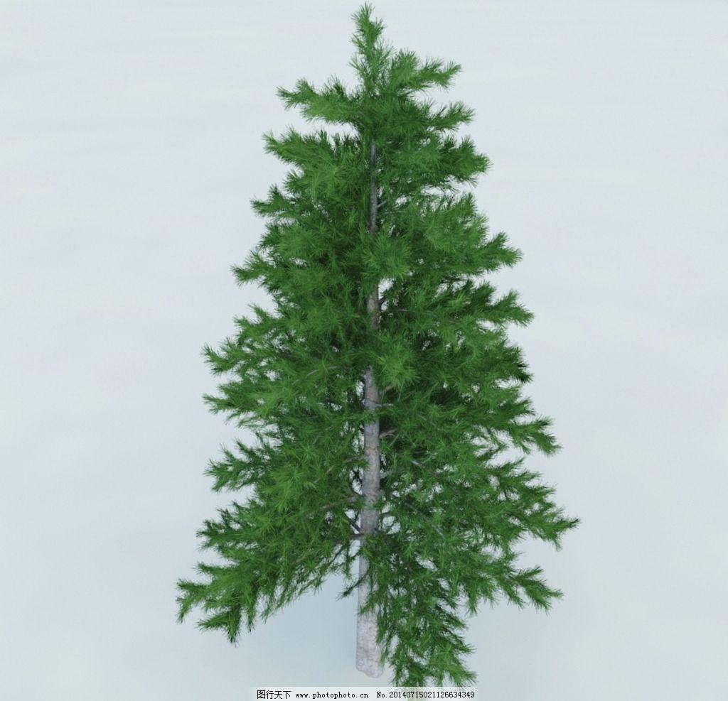 松树 树木 植物 景观树木 树木模型 植物模型 花模型 vray模型 室内