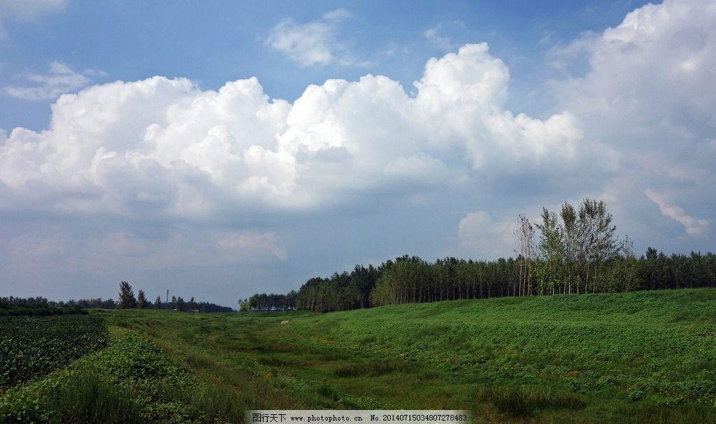 原野 天空 云彩 田野 景色 树木 自然风景 自然景观 摄影 350dpi jpg