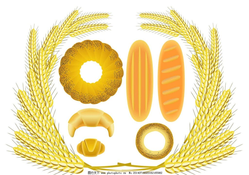 小麦麦穗图片