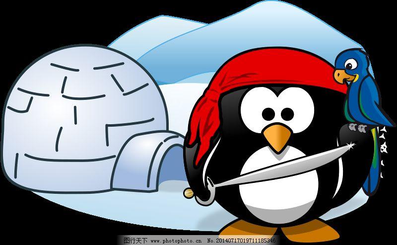 海盗在南极洲免费下载 冬天 动物 海盗 冷 鸟 企鹅 晚礼服 雪 鹦鹉 晚