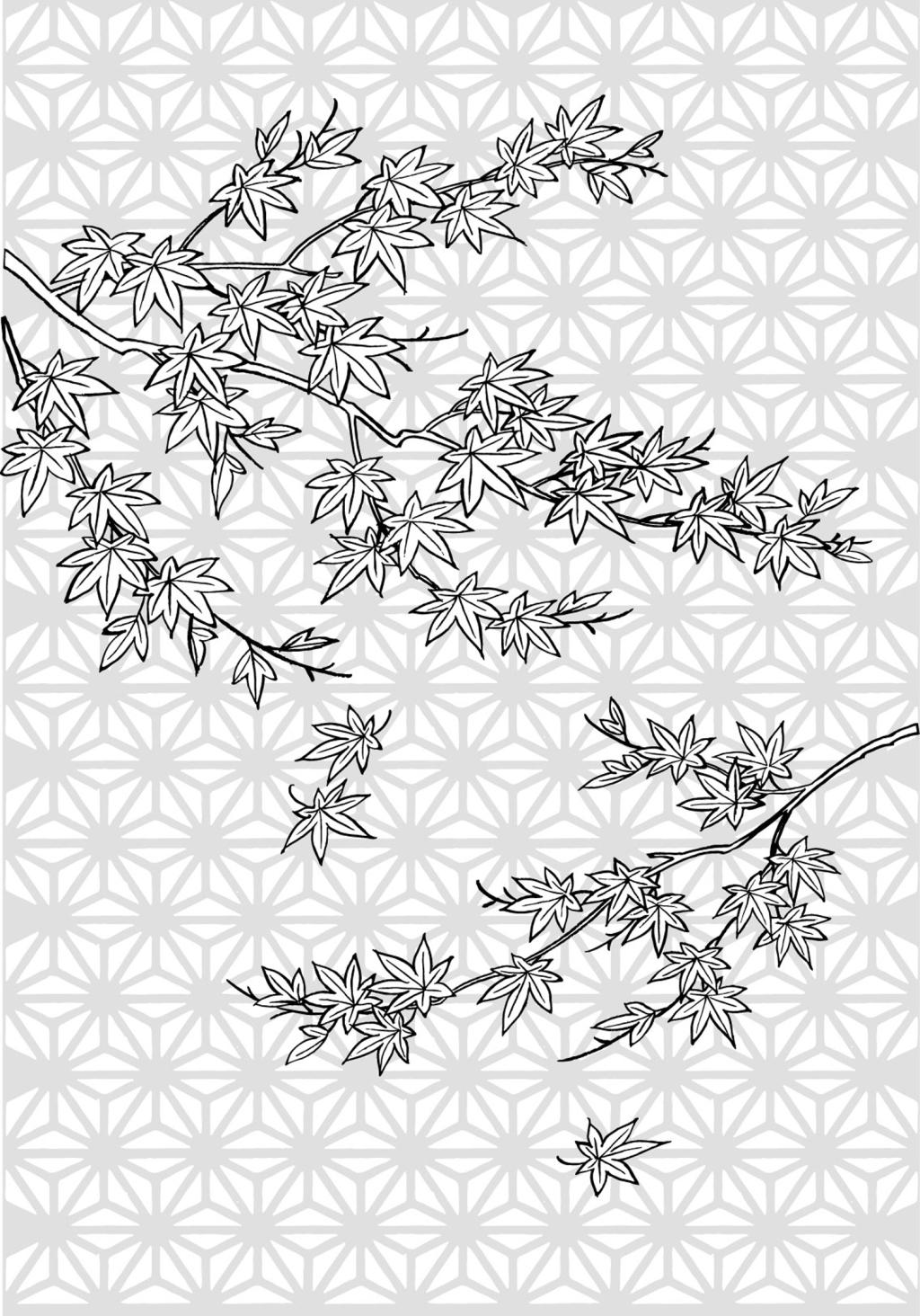 枫树手绘效果图
