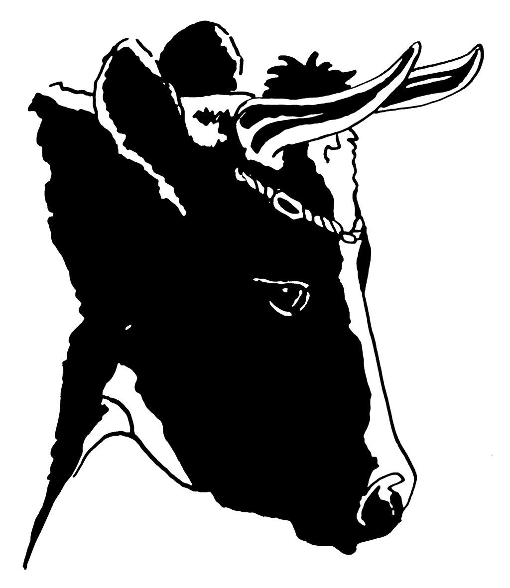 色彩 位图 位图 抽象动物 色彩 黑白色 马 面料图库 服装图案 免费