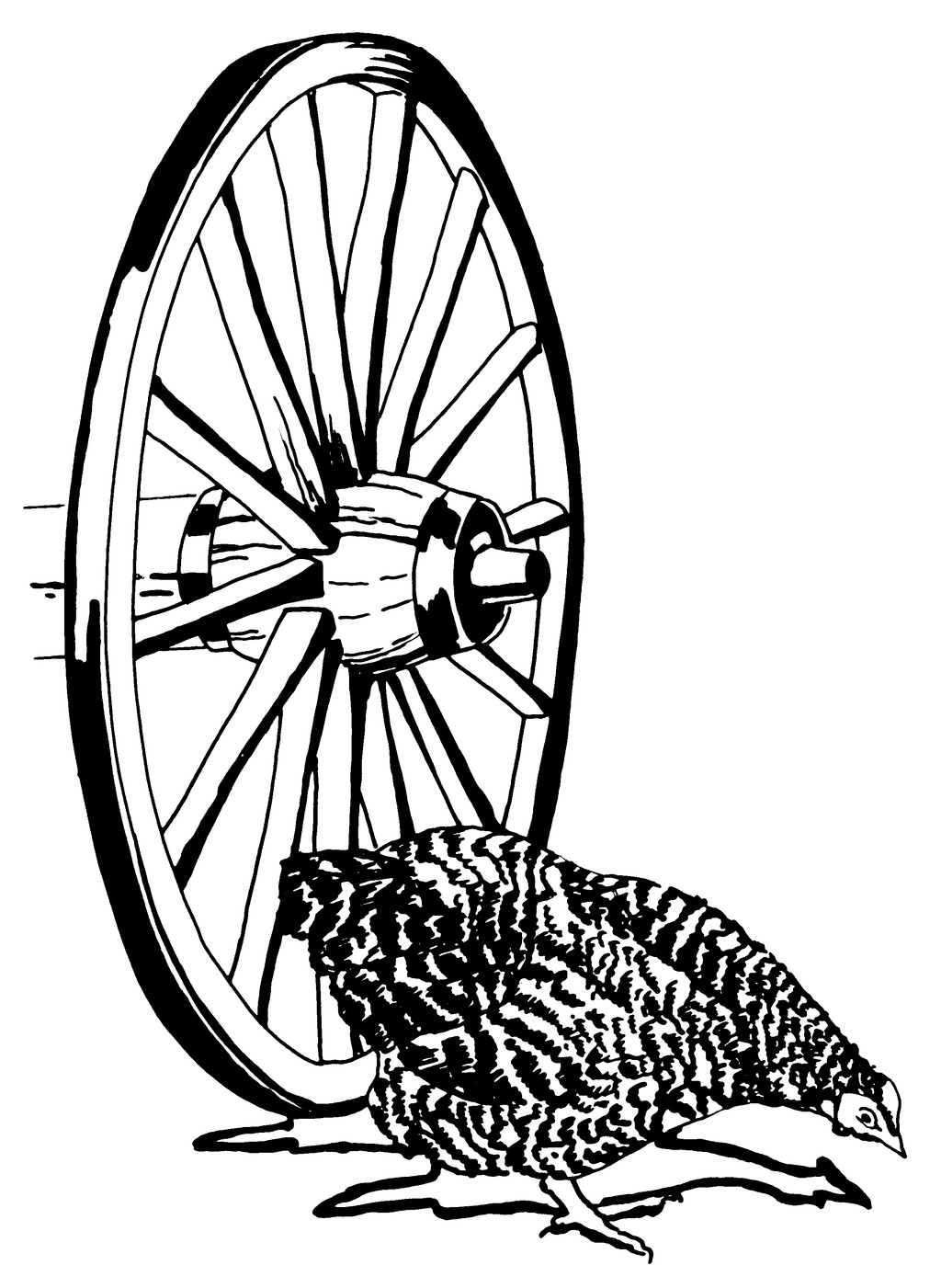 位图 位图 车轮 动物 鸡 色彩 面料图库 服装图案 免费下载 服装设计