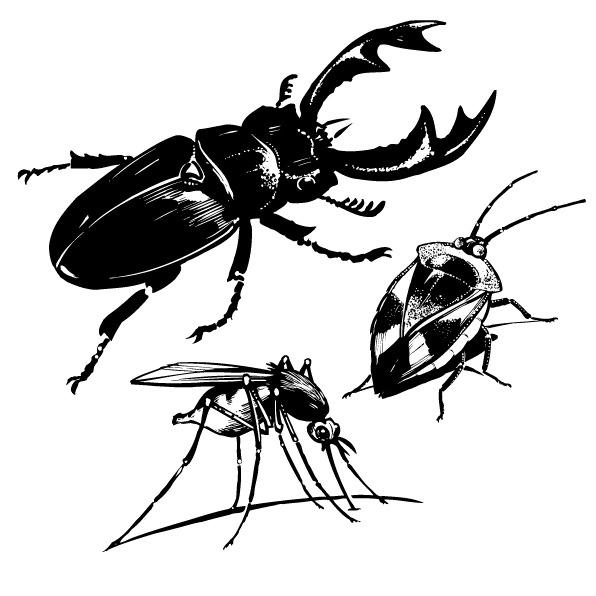 印花矢量图免费下载 动物 服装图案 昆虫 免费下载 印花矢量图 蟑螂