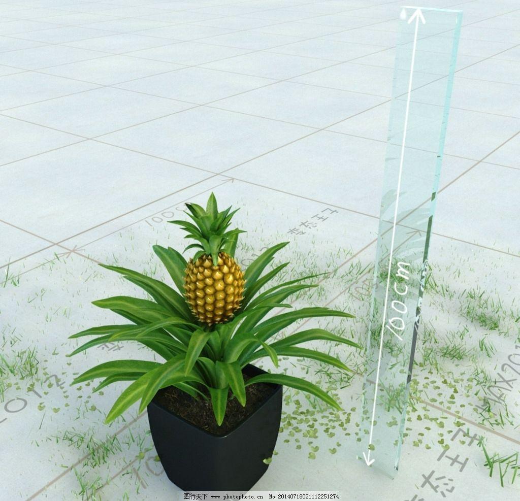 菠萝 盆栽 精美盆栽模型
