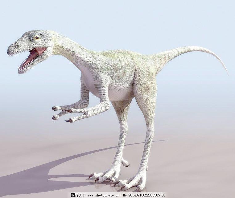 高模compsogn 恐龙 高模免费下载 动物模型 古代生物