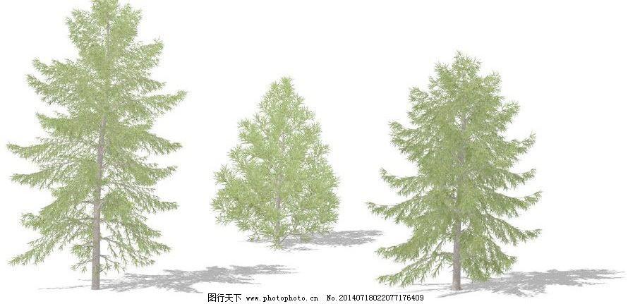 植物模型 树木模型