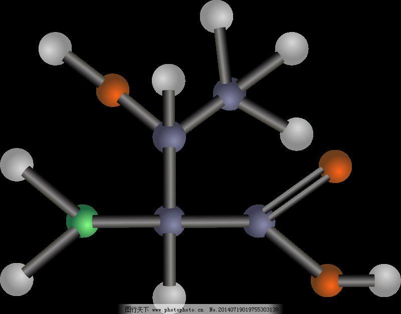 科学 模型 酸 酸 氨基酸 生物学 化学 模型 极性 科学 结构 苏氨酸