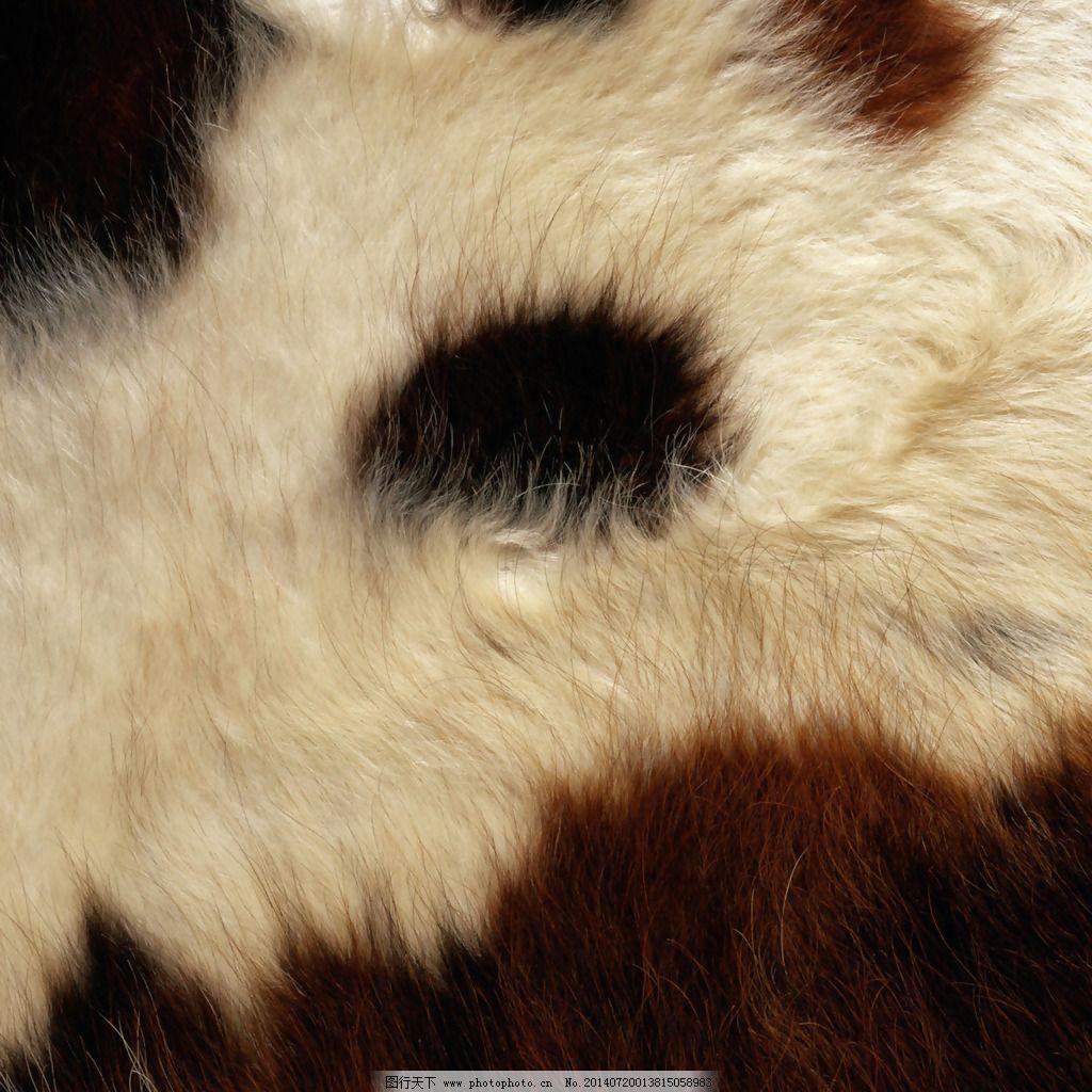实物面料 动物皮纹 免费素材