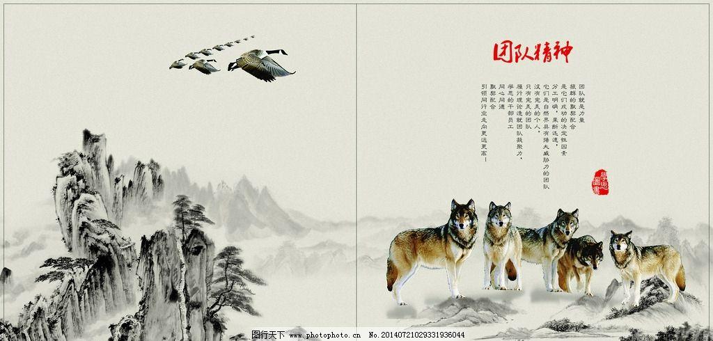 团结精神 中国风 样本设计 团队精神 组织力量 狼群精神 画册设计图片