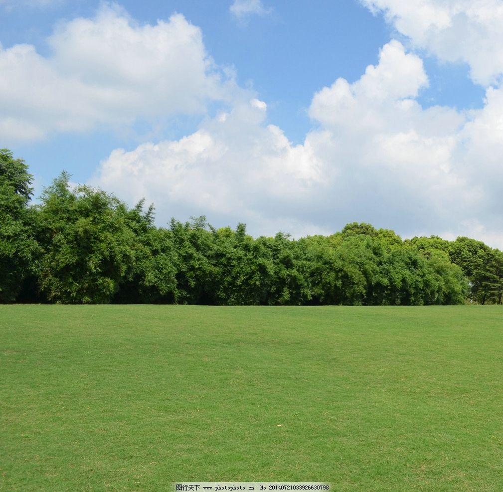 蓝天白云 蓝天 白云 草地 树林 天空 国内旅游 旅游摄影 摄影 300dpi
