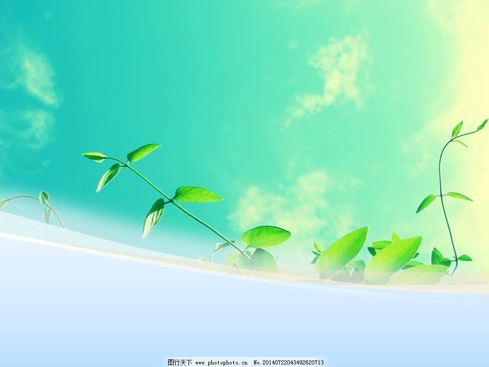 春绿 树叶 天空 树叶 天空 春绿 ppt ppt背景模板