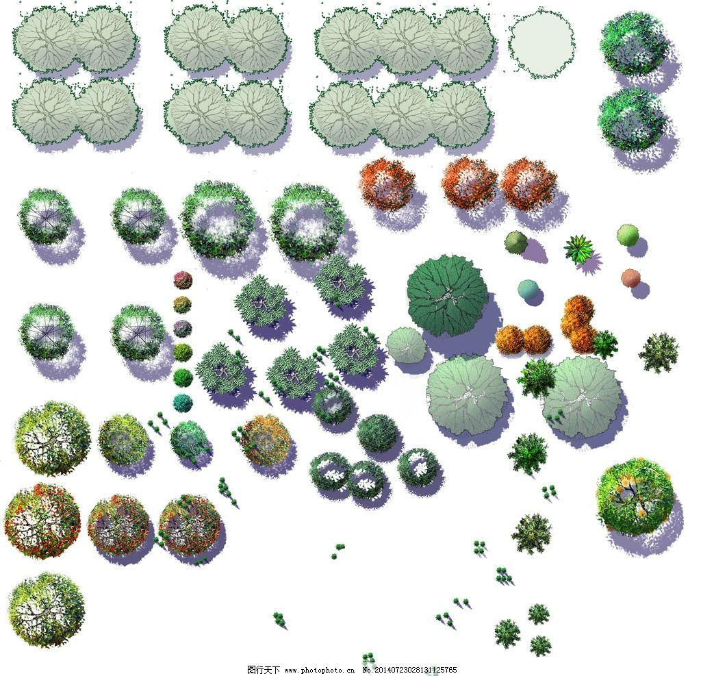 植物平面图例 园林 景观 设计 植物 图例 景观设计 环境设计 72dpi