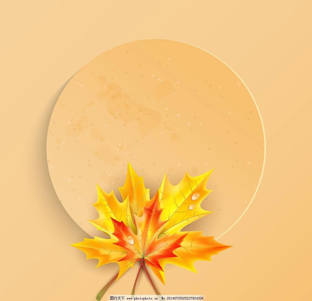 枫叶 树叶 叶子 环保背景 环保素材 秋天 秋季 秋景 秋韵 落叶 生态