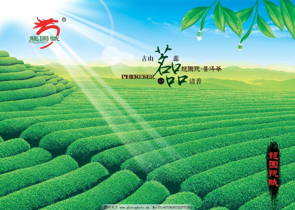 茶展板海报 茶展板海报免费下载 茶标志 茶叶 茶园 蓝天白云 普洱茶
