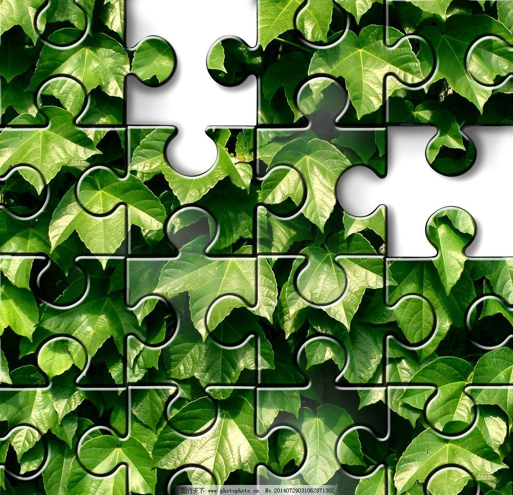 拼图 植物 叶片 绿色 拼图图案 绿叶 叶子 蔓藤 绿色植物 拼图素材
