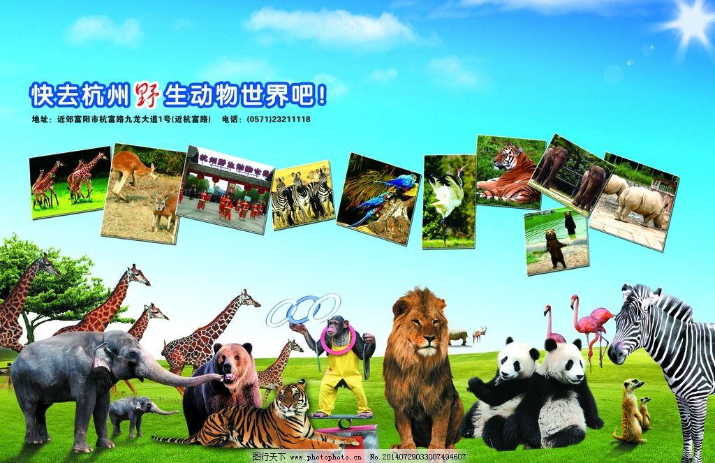 杭州野生动物园图片