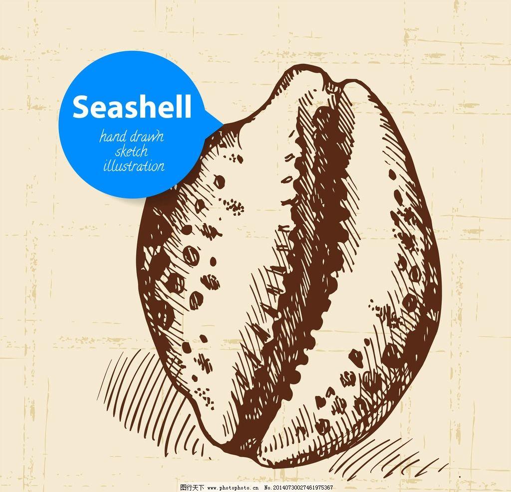 手绘贝壳 海螺 装饰品
