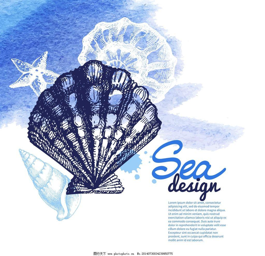 手绘贝壳 海螺 装饰品 素描 线描 海星 海洋生物 美术绘画 矢量