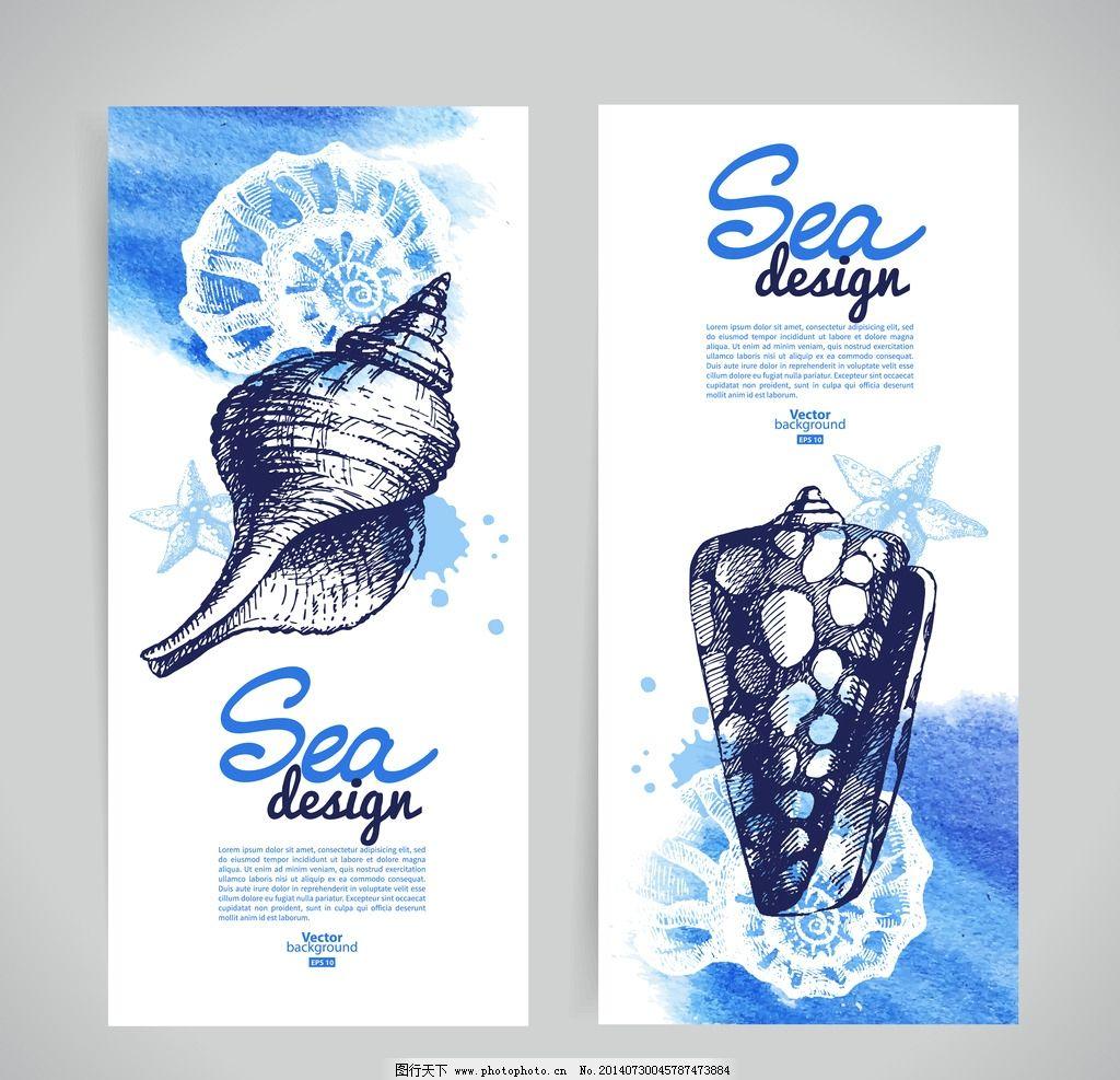 手绘贝壳 壳 海螺 装饰品