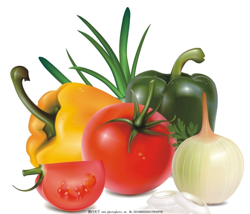 蔬菜 西红柿 洋葱 辣椒 矢量 其他图标 标志图标 设计 cdr