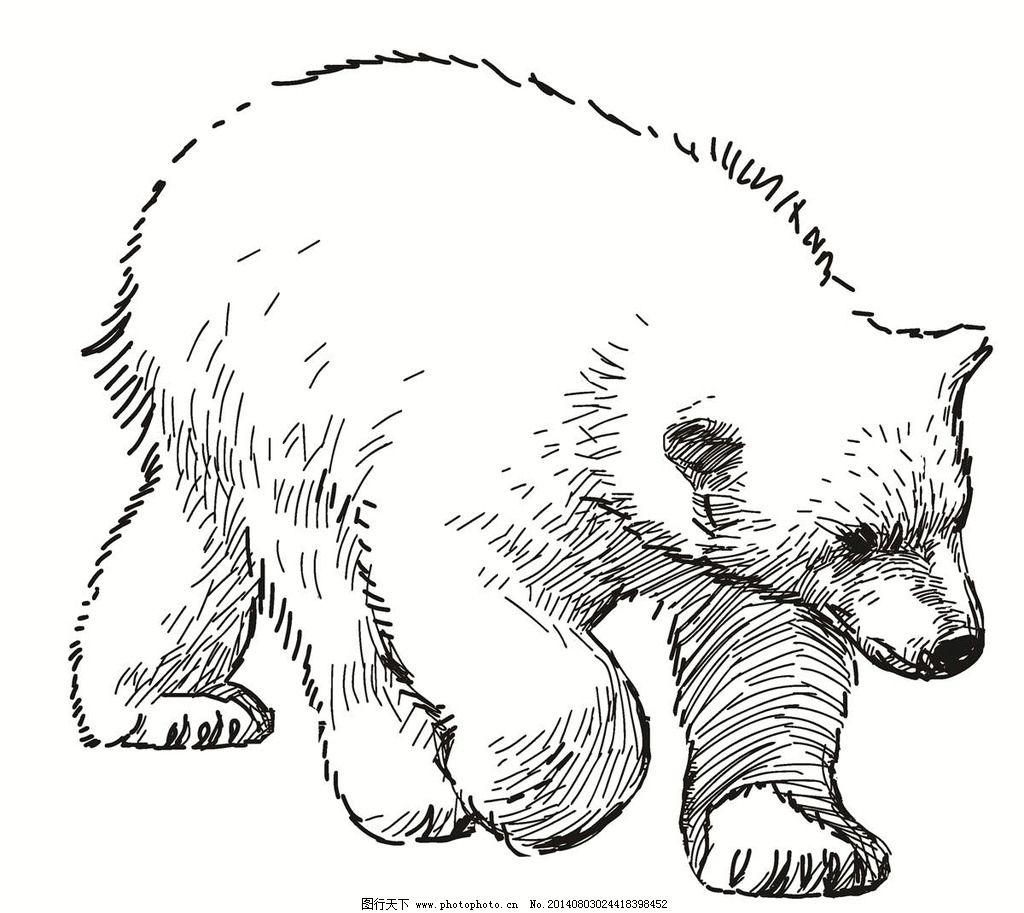 熊 北极熊 白熊 灰熊 动物 棕熊 可爱动物 熊图标 熊标志 野生动物