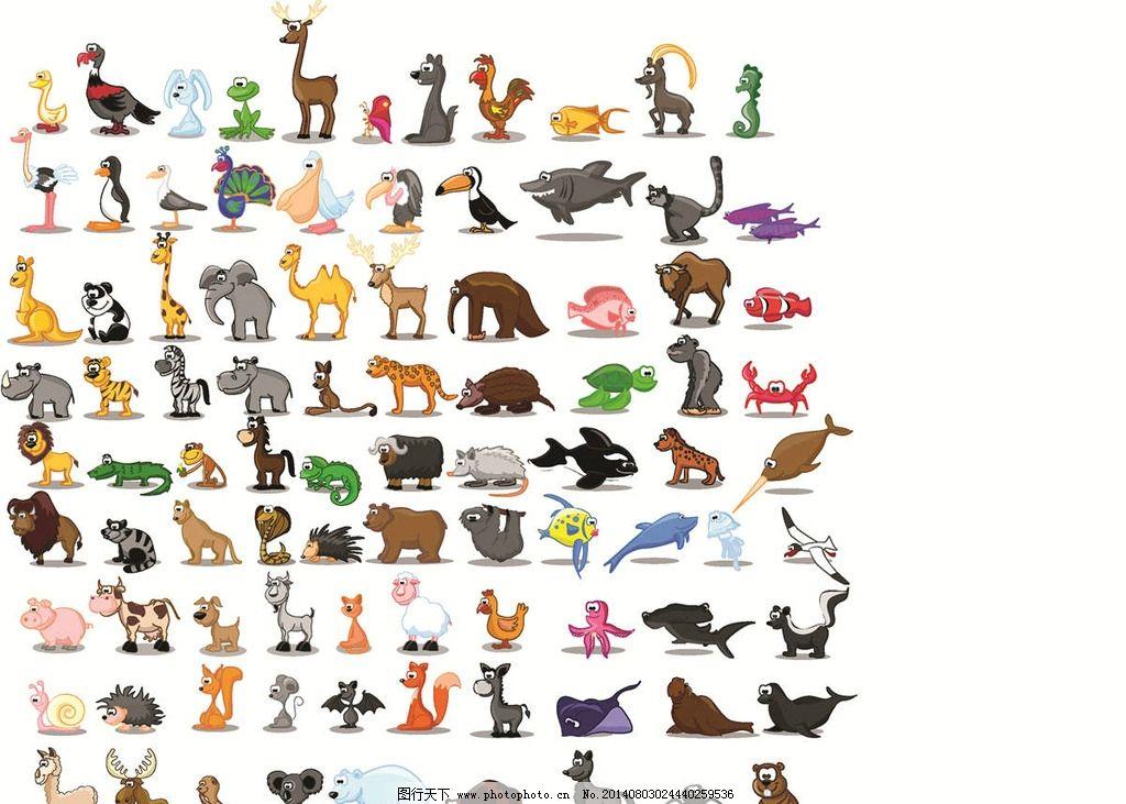 野生动物 动物 保护动物