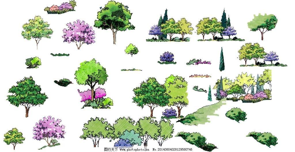 园林手绘树木图片